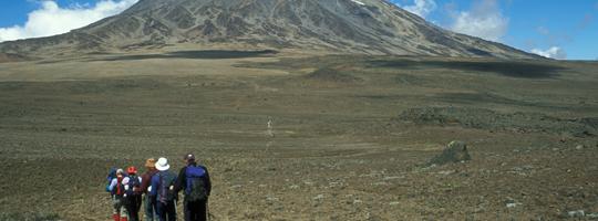 Picture-18_Climbing-Mount-Kilimanjaro-(1)